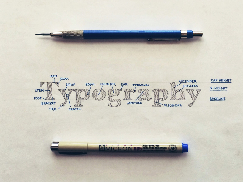 Hand Lettered Type Anatomy | hand lettering by seanwes