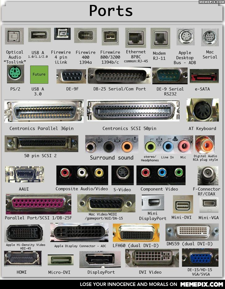 Many ports found on PCs, Macs, pheripherals, audio and video devices.